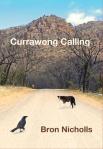 currawong calling